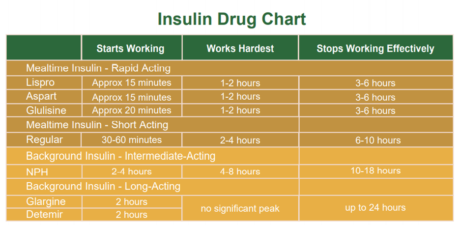 Insulin Therapy - Insulin Drug Chart