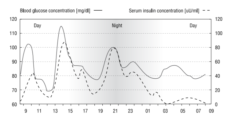 Blood Glucose Concentration Graph