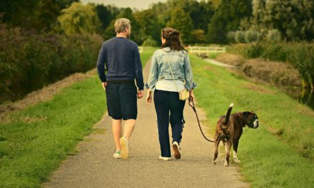 How can I incorporate walking and other types of exercise into my daily routine?